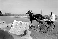 - Milan, San Siro Racecourse, harness racing <br /> <br /> - Milano, ippodromo di S.Siro, corse al trotto