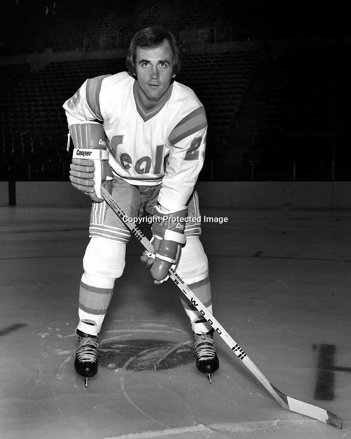 California Golden Seals Ted McAneeley, (1974 photo/Ron Riesterer)