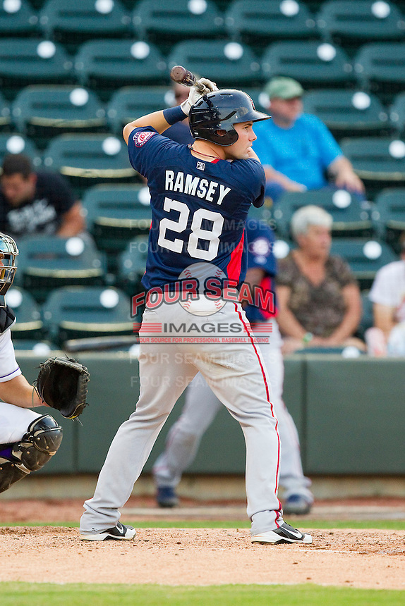 Caleb Ramsey (28) of the Potomac Nationals at bat against the Winston-Salem Dash at BB&T Ballpark on July 8, 2013 in Winston-Salem, North Carolina.  The Dash defeated the Nationals 12-9.  (Brian Westerholt/Four Seam Images)