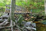 Man crossing footbridge along the Holt Trail which climbs to the summit of Cardigan Mountain in Orange , New Hampshire USA.