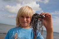 Strandgut sammeln, Naturkunst am Strand, Kinder, Kind sammeln Steine, Muscheln, Schnecken und andere Materialien, um damit zu basteln, Strandkunst, Meer, Küste