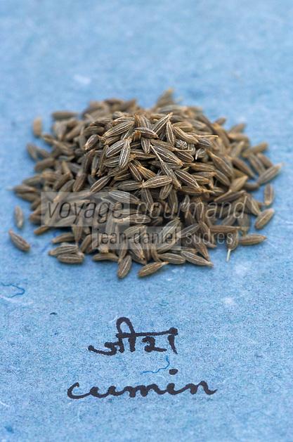 Asie/Inde/Maharashtra/Bombay : Les épices dans la cuisine indienne - Cumin