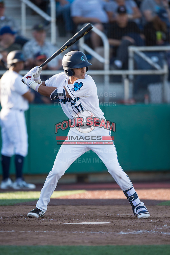 Everett AquaSox first baseman Nick Rodriguez (17) at bat during a Northwest League game against the Tri-City Dust Devils at Everett Memorial Stadium on September 3, 2018 in Everett, Washington. The Everett AquaSox defeated the Tri-City Dust Devils by a score of 8-3. (Zachary Lucy/Four Seam Images)