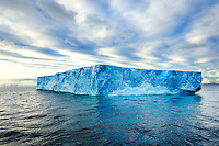 Icebergs in the Wendell Sea