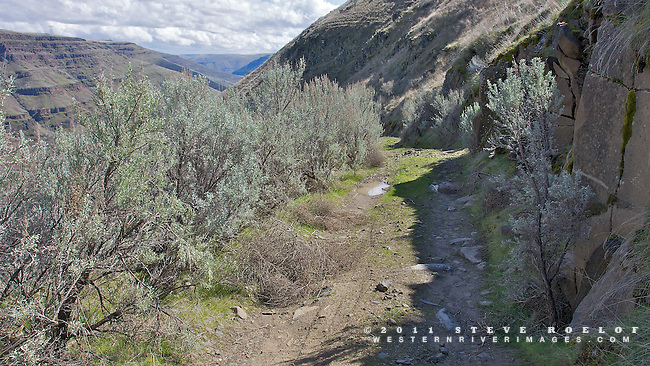 Sagebrush lines the narrow and rocky Free Bridge Road.