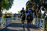 OCT 28: Breeders' Cup Juvenile  entrant Maxfield, walks with trainer Brendan P. Walsh, at Santa Anita Park in Arcadia, California on Oct 28, 2019. Evers/Eclipse Sportswire/Breeders' Cup