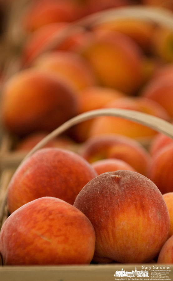 Ripe peaches in wooden baskets are ready for sale at a roadside market.<br />