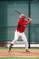 GCL Phillies catcher Nerluis Martinez (11) at bat during a game against the GCL Braves on August 3, 2016 at the Carpenter Complex in Clearwater, Florida.  GCL Phillies defeated GCL Braves 4-3 in a rain shortened six inning game.  (Mike Janes/Four Seam Images)