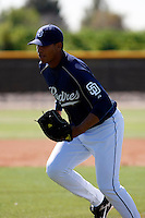 Adys Portillo  - San Diego Padres - 2009 spring training.Photo by:  Bill Mitchell/Four Seam Images