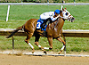 Peter Boy winning at Delaware Park on 5/31/12