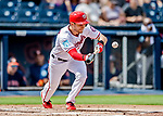 27 February 2019: Washington Nationals infielder Trea Turner lays down a bunt single during a pre-season game against the Houston Astros at the Ballpark of the Palm Beaches in West Palm Beach, Florida. The Nationals defeated the Astros 14-8 in their Spring Training Grapefruit League matchup. Mandatory Credit: Ed Wolfstein Photo *** RAW (NEF) Image File Available ***
