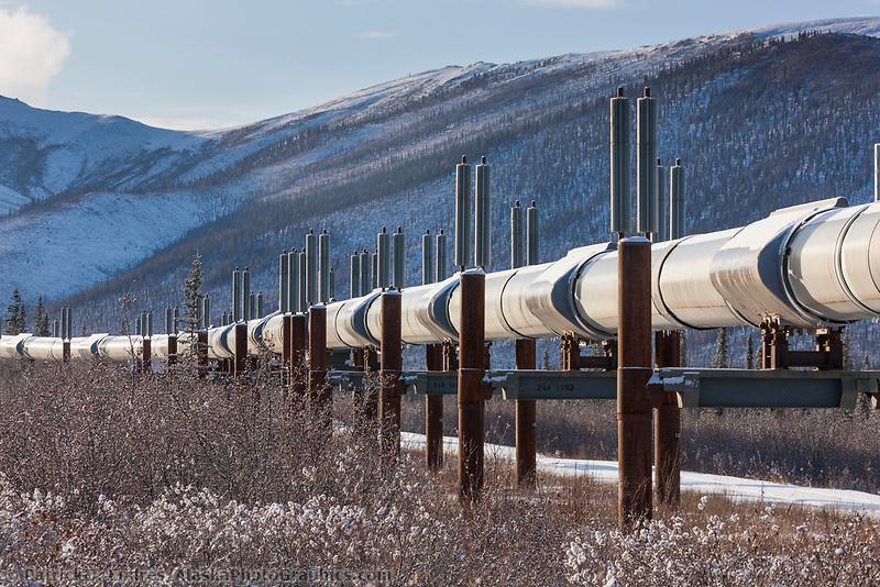 Trans Alaska oil pipeline traverses the winter tundra of Alaska.