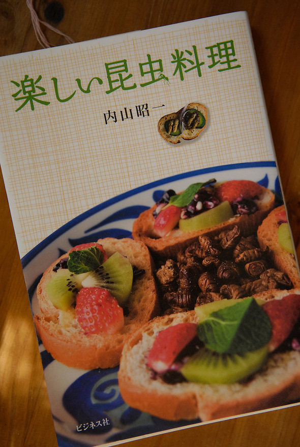 "Shochi Uchiyama's insect cookbook. The title reads ""Fun insect cooking"".Tokyo resident Shoichi Uchiyama is the author of ""Fun Insect Cooking"". His blog on the topic gets 400 hits a day. He believes insects could one day be the solution to food shortages, and that rearing bugs at home could dispel food safety worries."