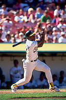 OAKLAND, CA - Rickey Henderson of the Oakland Athletics in action during a game at the Oakland Coliseum in Oakland, California in 1994. Photo by Brad Mangin