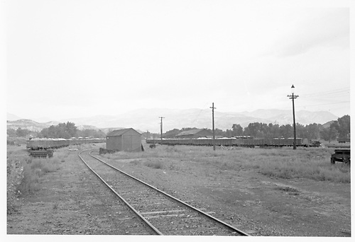 View of MT yards at Colorado City with ore trains parked.<br /> Midland Terminal  Colorado City, CO