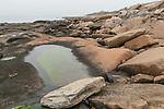 Seaside granite on the Northwest shores of Cape Ann, Massachusetts, near the village of Lanesville.