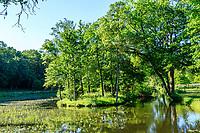 France, Maine-et-Loire (49), Brissac-Quincé, château de Brissac, ruisseau de Montayer et îlot