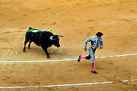 A Spanish bullfighter (banderillero) runs away from a bull at the bullring in Granada, Spain, 7 June 2006.