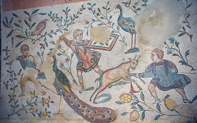 Close up detail picture of the Roman mosaics of the Room of the Chidrens's Hunt depicting children hunting animals, room no 44 at the Villa Romana del Casale, first quarter of the 4th century AD. Sicily, Italy. A UNESCO World Heritage Site.<br /> <br /> The Roman mosaic on the floor of the cubicle of the Child Hunt in the Villa Romana del Casale is divided into three registers with a floral theme.<br /> <br /> In the first register boys are spearing a hare with a venabulum ( spear) while to their right another boy has trapped a duckling. <br /> <br /> In the second register tree young hunters are portrayed being attacked by animals, one boy has fallen down having been bitten on the calf by a weasel. The boy in the middle has his hands raised calling for help and to his right a boy is about to be attacked bu a cockerel.<br /> <br /> In the lower register a boy is holding a raised club about to hit a peacock while another boy is spearing a goat and another is using a shield to protect himself from a Great Bustard.