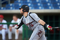 Louisville Cardinals Justin Lavey (16) at bat during a game against the Ball State Cardinals on February 19, 2017 at Spectrum Field in Clearwater, Florida.  Louisville defeated Ball State 10-4.  (Mike Janes/Four Seam Images)