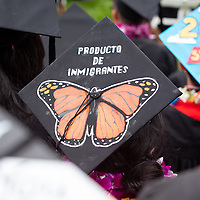 A graduate with a personalized mortarboard, or cap and tassel.<br /> Families, friends, faculty, staff and distinguished guests celebrate the class of 2019 during Occidental College's 137th Commencement ceremony on Sunday, May 19, 2019 in the Remsen Bird Hillside Theater.<br /> (Photo by Marc Campos, Occidental College Photographer)