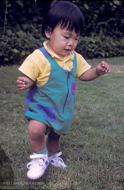 Palo Alto CA Baby, one-year-old, taking fist steps (Japanese) MR