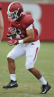 NWA Democrat-Gazette/ANDY SHUPE<br /> Arkansas running back Chase Hayden carries the ball Tuesday, Aug. 1, 2017, during practice at the university's practice field in Fayetteville. Visit nwadg.com/photos to see more photographs from the day's practice.