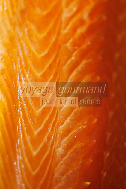 Europe/France/Aquitaine/40/Landes/Peyrehorade: Jacques Barthouil: La Maison du Saumon- Fumage des saumons sauvages des Gaves et de l'Adour //  France, Landes, Peyrehorade, Maison du Saumon, Jacques Barthouil, smokehouse for wild salmons fished in the Adour River