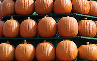 Circleville Pumpkin Festival, central Ohio