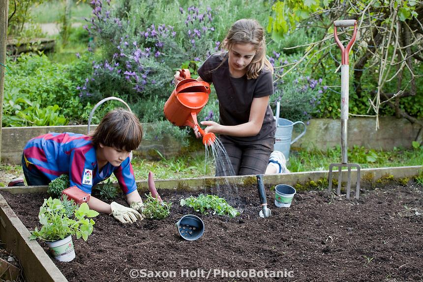 Children planting herb garden and watering in rich soil