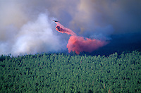 Plane drops slurry on forest fire, forest of ponderosa pine and mixed conifers, Leroux Fire, Kachina Peaks Wilderness Area, Coconino National Forest, Flagstaff, Arizona, AGPix_0164 .