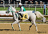 Sergeant Pepper MHF at Delaware Park on 8/28/14