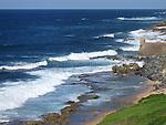 Sea + Shore