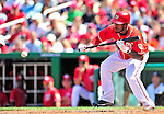 29 August 2010: Washington Nationals utilityman Willie Harris in action against the St. Louis Cardinals at Nationals Park in Washington, DC. The Nationals defeated the Cards 4-2 to take the final game of their 4-game series. Mandatory Credit: Ed Wolfstein Photo