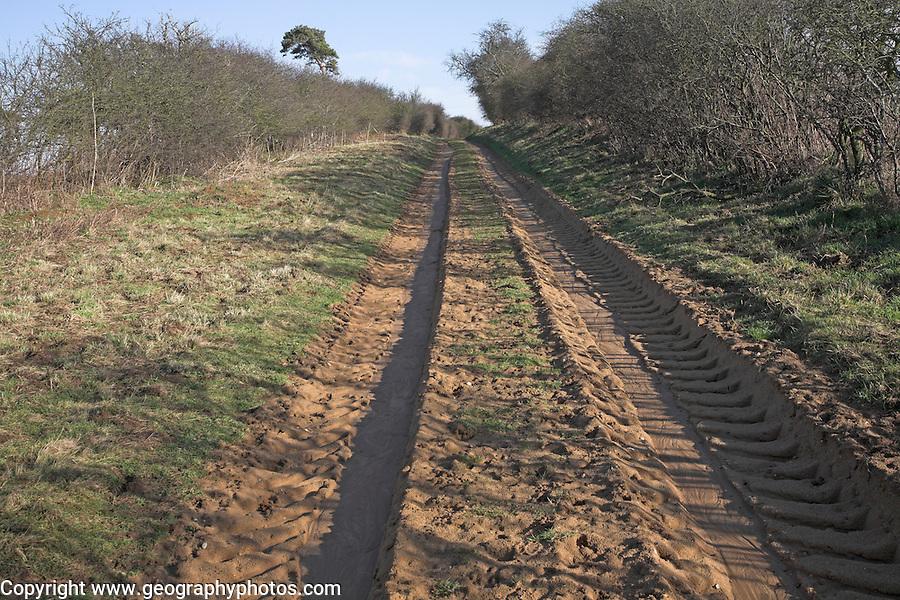 Ancient road, Butley, Suffolk, England