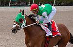 February 1st, 2020: #1 Mischevious Alex with jockey Irad Ortiz Jr. on board wins the Swale G3 Stakes at Gulfstream Park Race Track in Hallandale Beach, Florida. Liz Lamont/Eclipse Sportswire/CSM