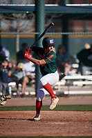 Alex Ulloa during the Under Armour All-America Tournament powered by Baseball Factory on January 18, 2020 at Sloan Park in Mesa, Arizona.  (Mike Janes/Four Seam Images)