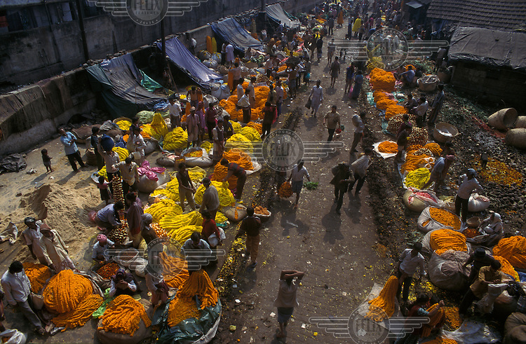 Section of the flower market near Howrah bridge specialising in garlands of marigolds used for welcoming guests and offering to deities in Hindu temples.