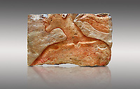 Ancient Egyptian relief portrait fragment of King Akhenaten from Amarna. 18th Dynasty 1345 BC . Neues Museum Berlin 1985.328.3: Gift from New York Metropolitan Museum, Norbert Schimmel.