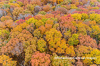 63876-02509 Aerial view of fall color trees Stephen A. Forbes State Park Marion Co. IL