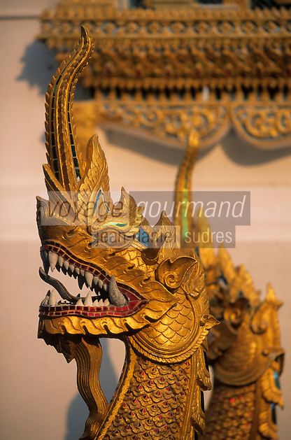 """Asie/Thaïlande/Env de Chiang Mai/Parc National de Doi Suthep-Doi Pui : Sanctuaire du Wat Phra That Doi Suthep dans la montagne Doi Suthep (Fondé en 1383 pour abriter de précieuses reliques) - Détail """"Nagas"""" serpent à tête de dragon"""