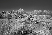 Buckrail Fence, Grand Tetons, Grand Teton National Park, Jackson Hole, Wyoming