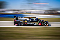 #5 MUSTANG SAMPLING RACING (USA) CADILLAC DPI FILIPE ALBUQUERQUE (PRT) JOAO BARBOSA (PRT) CHRISTIAN FITTIPALDI (BRA)