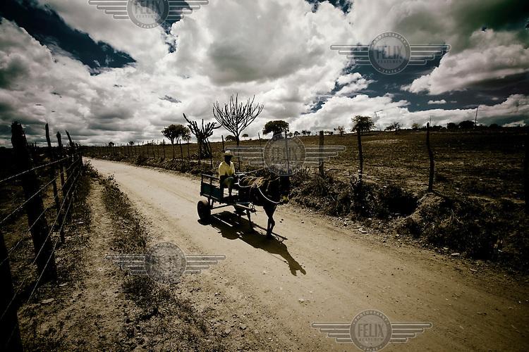 A farmer travels on a horse drawn cart in the Brazilian sertao (desert).