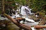 Idaho, North, Boundary County, Bonners Ferry. Snow Creek Falls in the Selkirk Mountains of the Idaho Panhandle in late winter with snow.