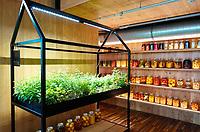 Nederland - Amsterdam - 24 maart 2018.  Verse tuinkruiden en ingelegde groentes in het Circl Paviljoen van de ABN AMRO bank op de Zuidas.   Foto Berlinda van Dam Hollandse Hoogte