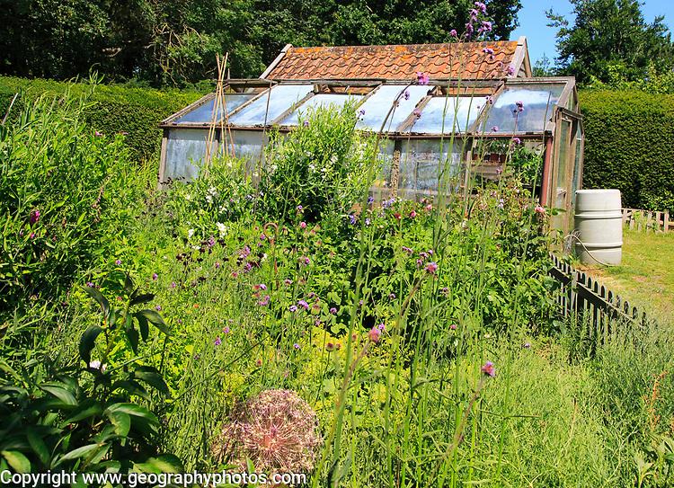 Cottage garden summer RHS Garden open day at Gedgrave Hall, Orford, Suffolk, England, UK