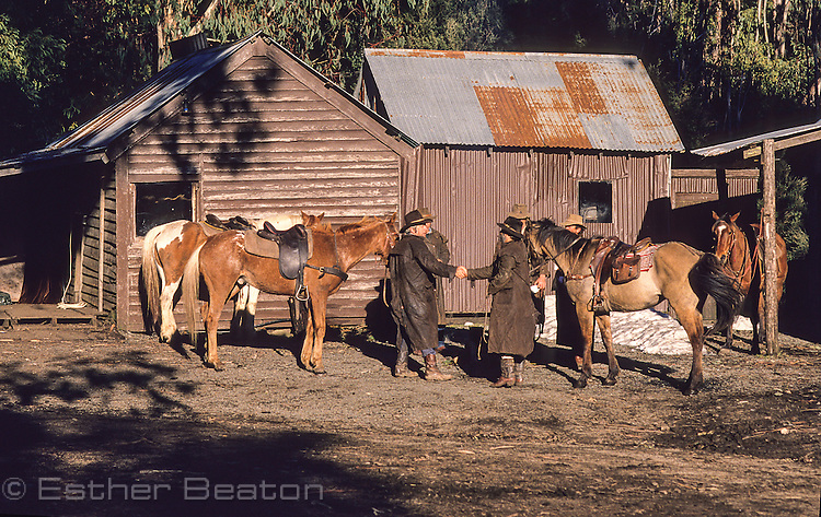 Mountain Cattlemen or stockman, having early morning tea. Near Mt Buller, Snowy Mountains, Victoria.
