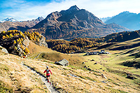 Trail running above Grevasalvas, near Maloja, in the Engadin, during the fall colors. Switzerland