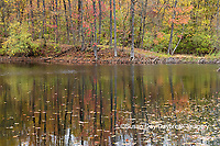 63895-15608 Fall Color Pyramid Lake State Recreation Area Perry Co. IL